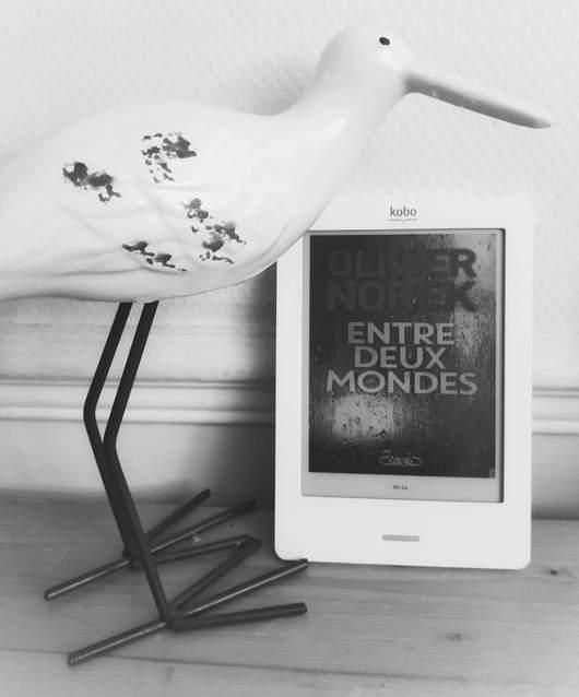 couverture du ebook entre deux mondes de Olivier Norek